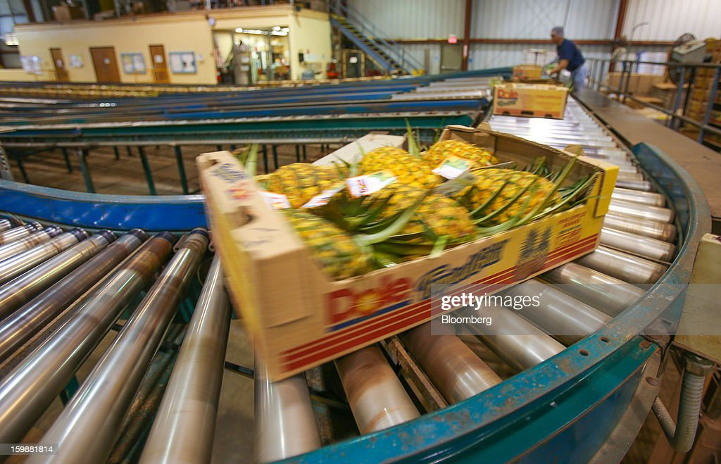 A box of whole pineapples moves along a conveyor before shipment at the Dole Food Company Inc. plantation in Wahiawa, Hawaii, U.S., on Thursday, Jan. 17, 2013. Dole Food Company Inc. has evolved from a Hawaiian pineapple purveyor into the world's largest producer of fresh fruit and vegetables. Photographer: Tim Rue/Bloomberg via Getty Images