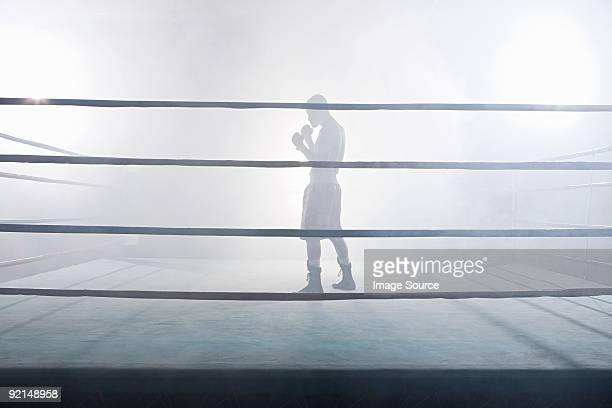 Boxer in ring da pugilato