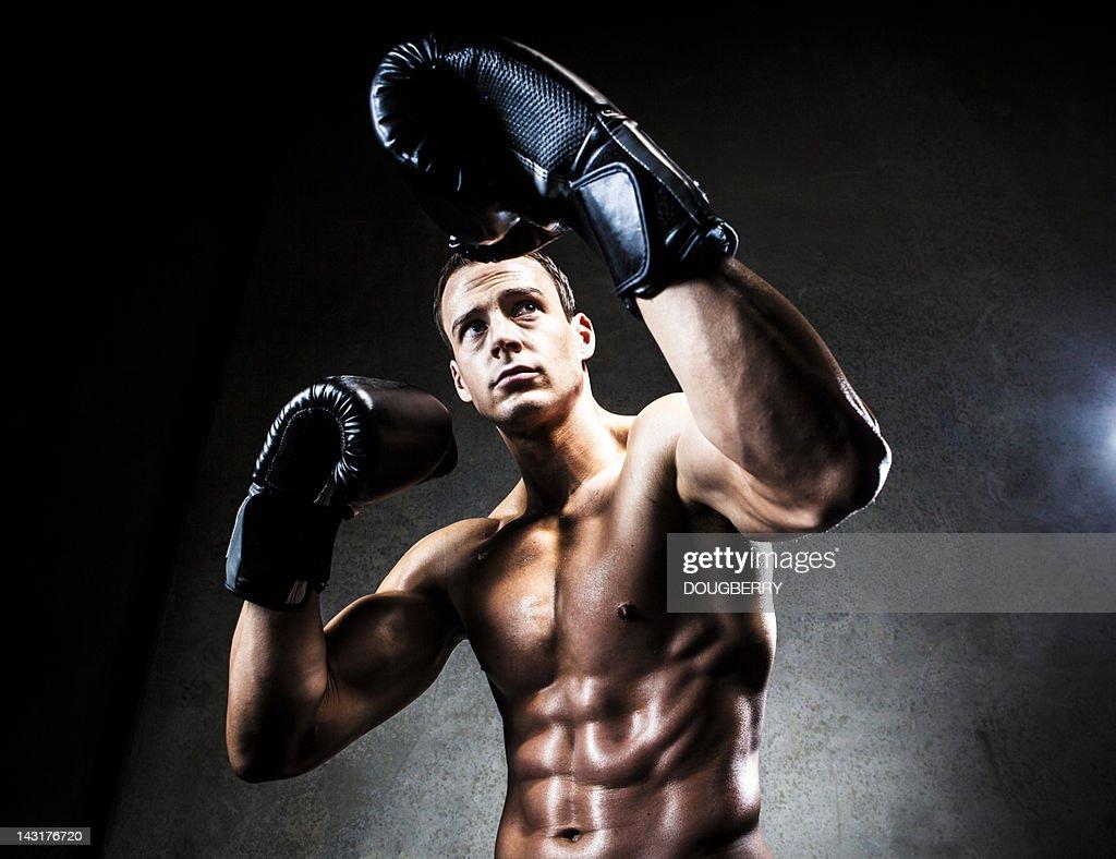 Boxer in defensive pose : Stock Photo