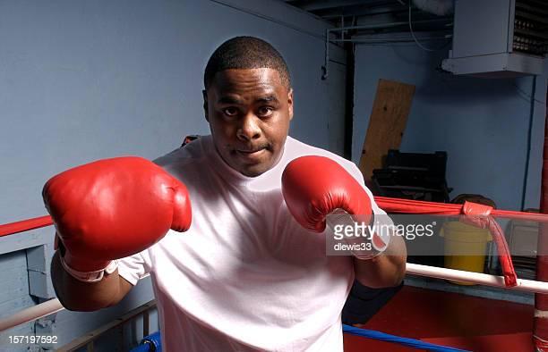 Boxer in Training