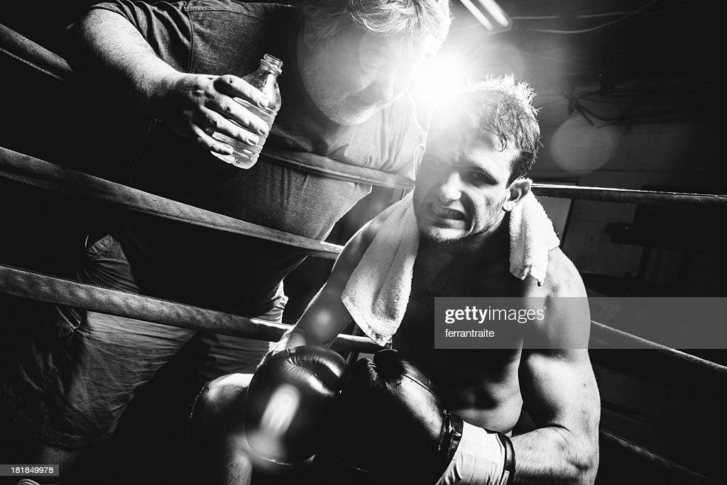 Boxer : Stock Photo