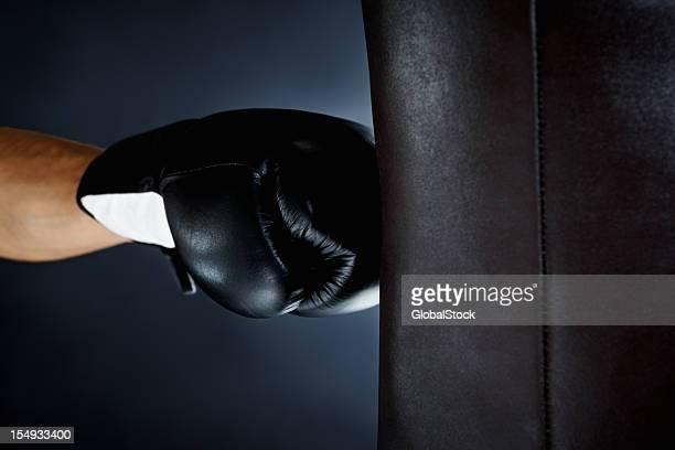 Boxer punching-ball