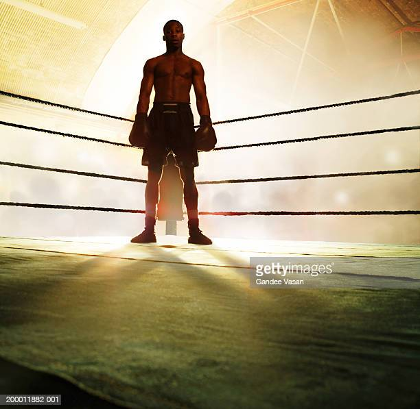 Boxer standing in corner of ring, portrait