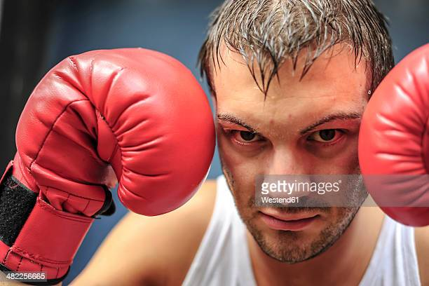 Boxer with red boxing gloves, portrait