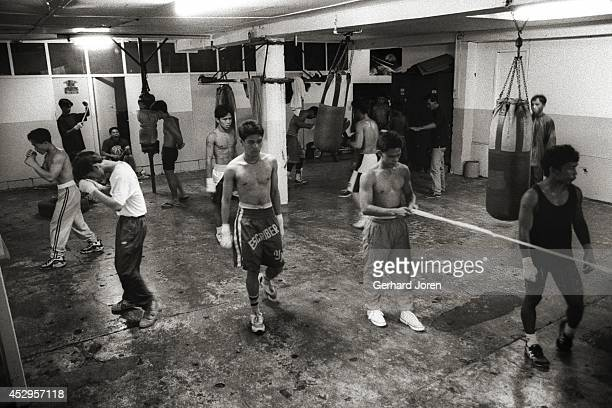 Boxers at the LM gym in Manila in 1996 Manny Pacquiao is second from the right behind the punch bag Some of the boxers including Manny would stay in...