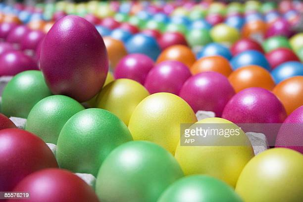 Boxes filled with coloured eggs are pictured on March 24 2009 in Barneveld a few weeks before the Catholic Easter The Eicom plant in Barneveld every...