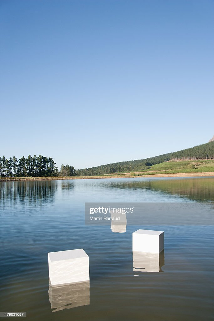 Boxes floating in water with trees : Stock Photo