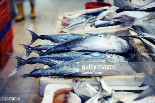 Boxes of blue fish