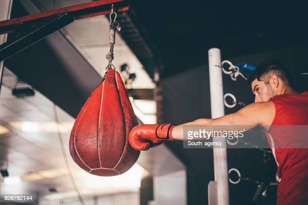 Toute la journée de boxe