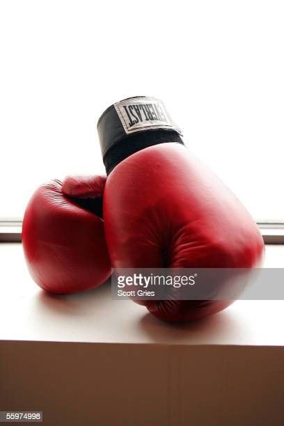 Boxing gloves at the Aerospace Performance Center on August 26 2005 in New York City
