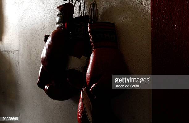 Boxing gloves hang on the wall at the Urbina Westside Boxing Gym where Israel Vasquez Twotime Junior Featherweight World Champion had a workout...