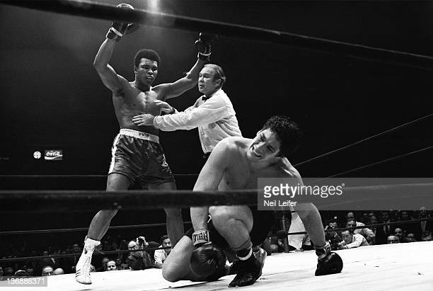 Boxing NABF Heavyweight Title Muhammad Ali victorious getting held back by referee Mark Conn after knockdown of Oscar Bonavena during fight at...