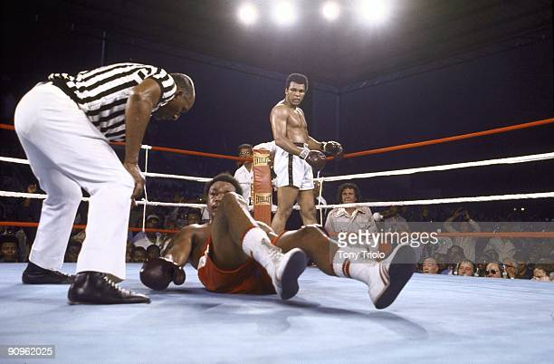 WBA/WBC Heavyweight Title George Foreman tries to get off the canvas as referee Zack Clayton checks on him during the match against Muhammad Ali at...