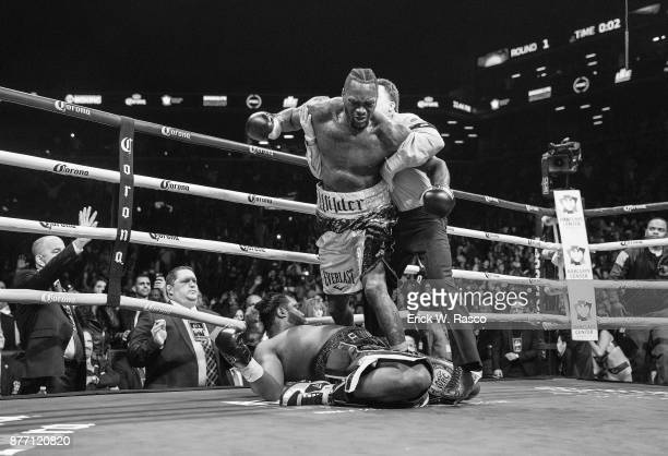 WBC Heavyweight Championship Deontay Wilder after knocking down Bermane Stiverne during Showtime Championship bout at Barclays Center Brooklyn NY...
