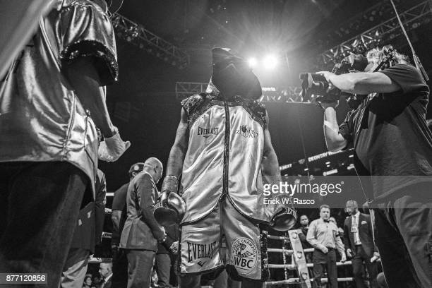 WBC Heavyweight Championship Deontay Wilder before Showtime Championship bout vs Bermane Stiverne at Barclays Center Brooklyn NY CREDIT Erick W Rasco