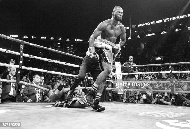 WBC Heavyweight Championship Deontay Wilder victorious after knocking down Bermane Stiverne during Showtime Championship bout at Barclays Center...