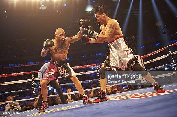 WBC Middleweight Title Miguel Cotto in action vs Sergio Martinez at Madison Square Garden New York NY CREDIT Carlos M Saavedra