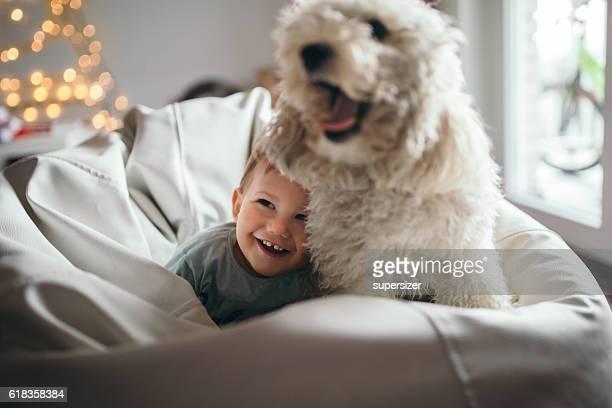 Ragazzo e il cane