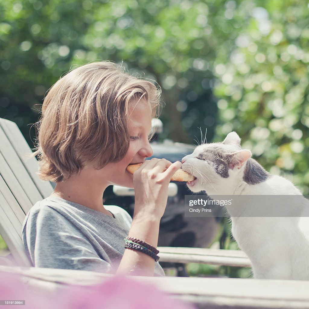 Boy and cat : Stock Photo