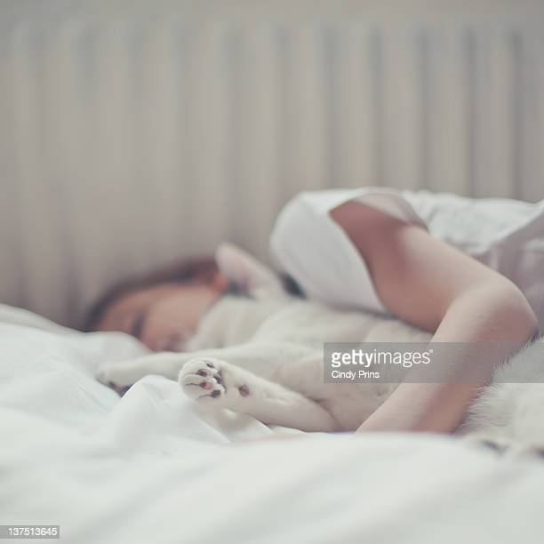 Boy and cat sleeping on white bed