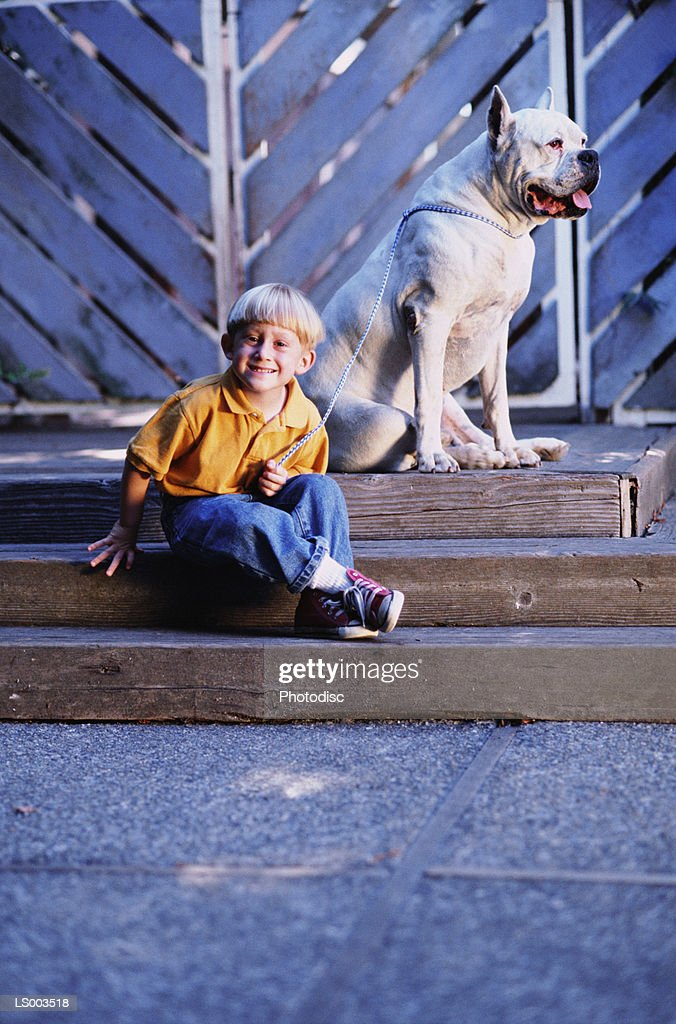 Boy and Dog on Steps : Stock Photo
