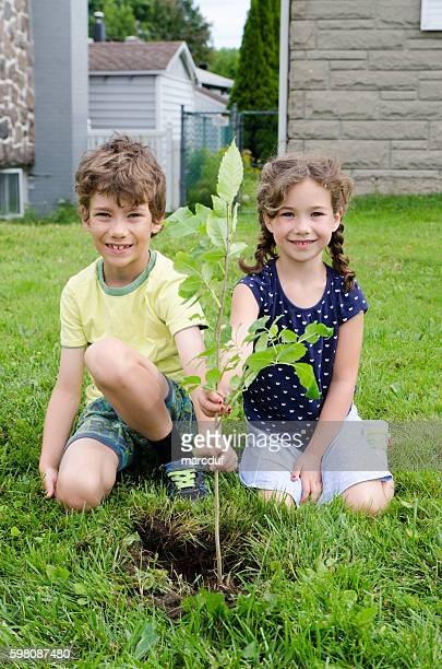 Boy and girl planting a tree on front yard