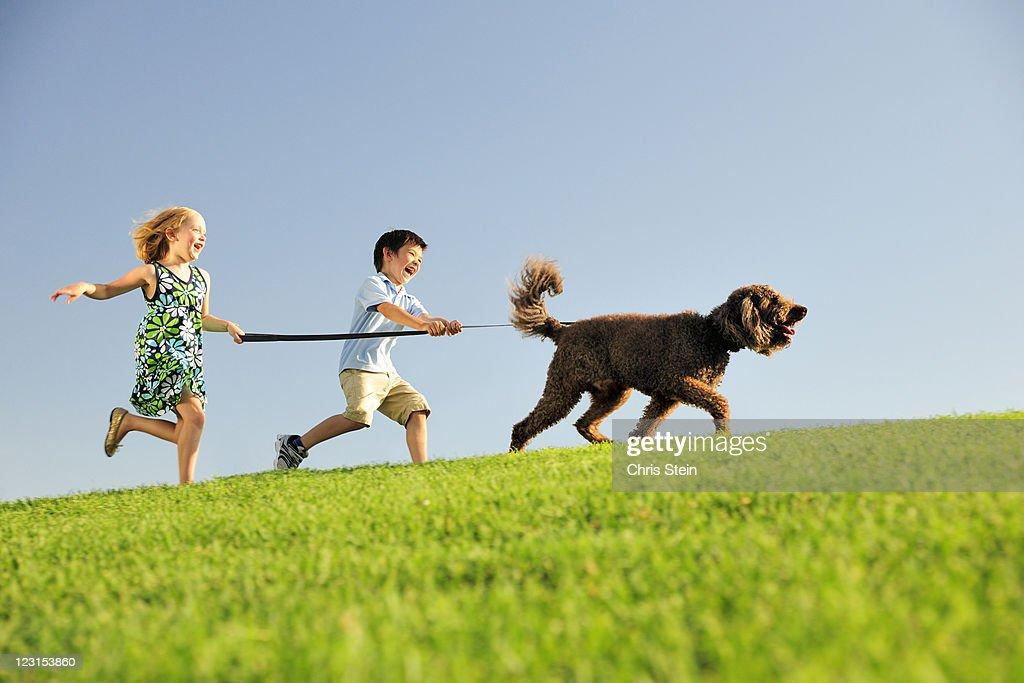 Boy and Girl walk their dog : Stock Photo
