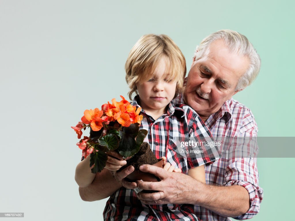 Boy and grandfather with potted plant : Stock Photo