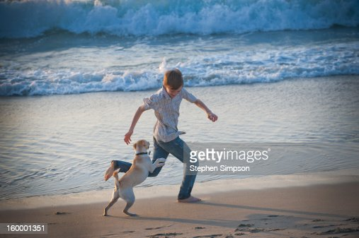 boy and his dog running on the beach : Stock Photo