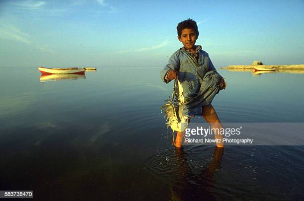 Boy and lame sea gull in Lake Qarun at the Fayyum Oasis Egypt | Location Fayyum Oasis Egypt