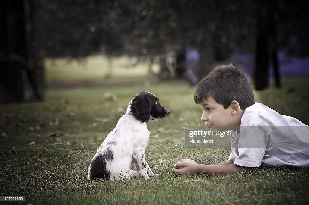 Boy and puppy lying on grass : Stock Photo