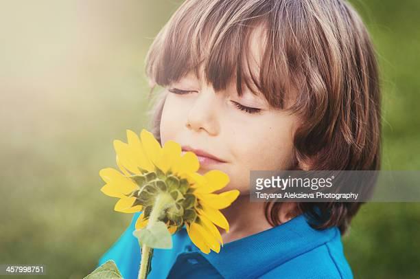 Boy and sunflower