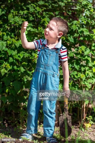 Boy At Garden. Nature-study