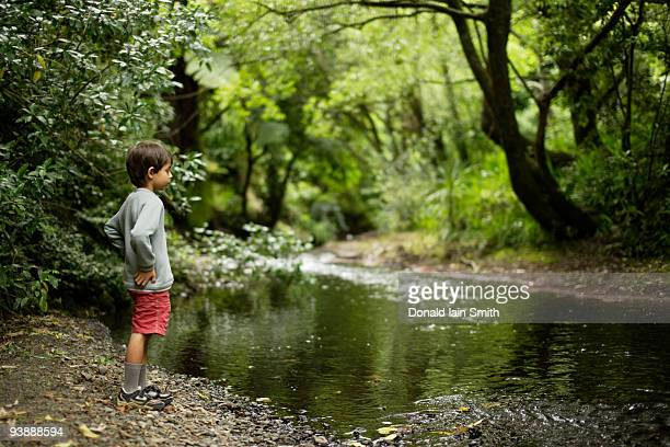 Boy at woodland stream.