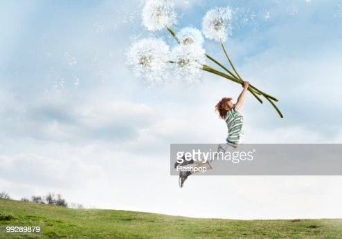 Boy being lifted into the air holding dandelions : Stock Photo