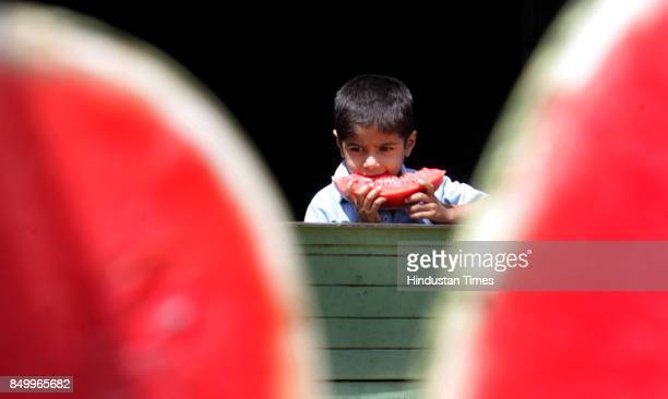 A boy bites into a water melon as the temperature soares to 33 degree celcius on Sunday