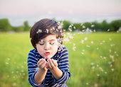 Boy blowing dandelions