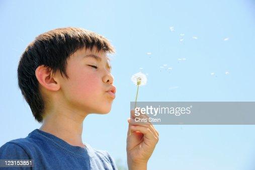 Boy blowing on a dandelion : Stock Photo