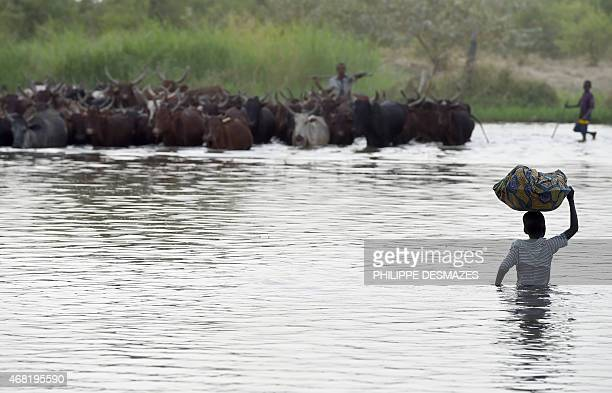 A boy carries a bundle on his head as a man herds cattle across a section of Lake Chad whose waters border Niger Nigeria and Cameroon on March 30...
