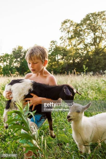 Boy carrying a goat