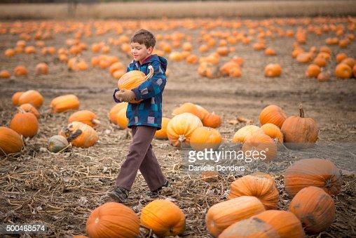Boy carrying a pumpkin at a pumpkin patch