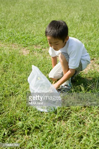 Boy Catching Insect : Stock Photo