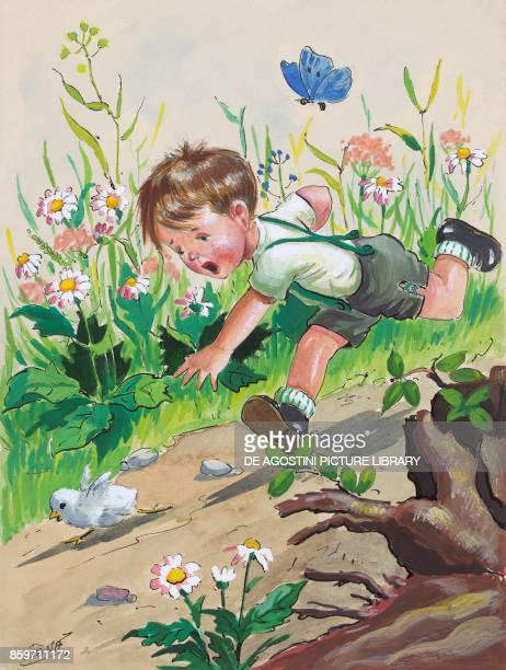 Boy chasing a chick children's illustration drawing