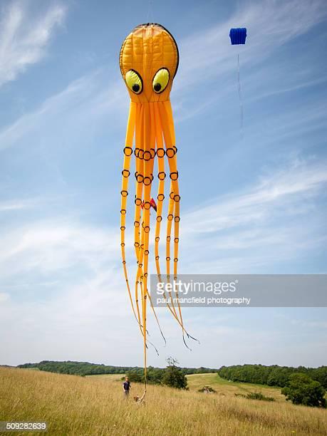 Boy chasing kite