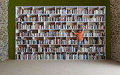 Boy climbing bookshelves