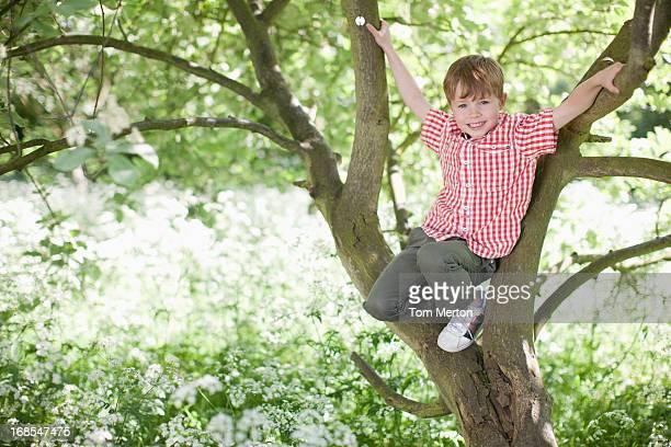 Boy climbing tree outdoors