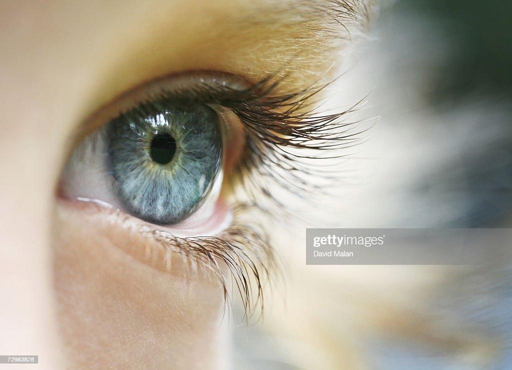 Boy (6-7), close up of eye, : Stock Photo