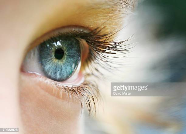 Boy (6-7), close up of eye,