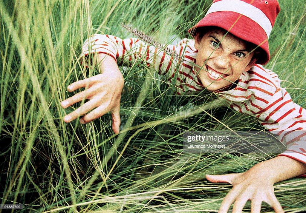 Boy crawling through grass : Stock Photo