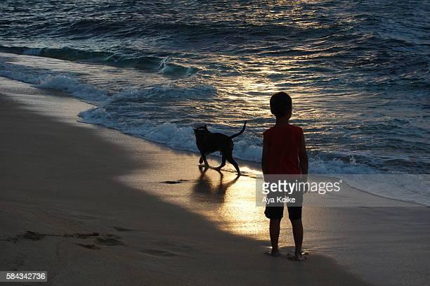 boy, dog, and sea